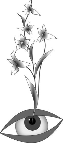 bloemoog